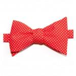 Noeud-papillon-rouge-mini-pois-Le-Colonel-Moutarde-La-Fiancee-du-Panda-blog-Mariage-et-Lifestyle