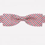 Noeud-papillon-vichy-Ikoniz-A-Boy-Mercurys-Crown-La-Fiancee-du-Panda-blog-Mariage-et-Lifestyle