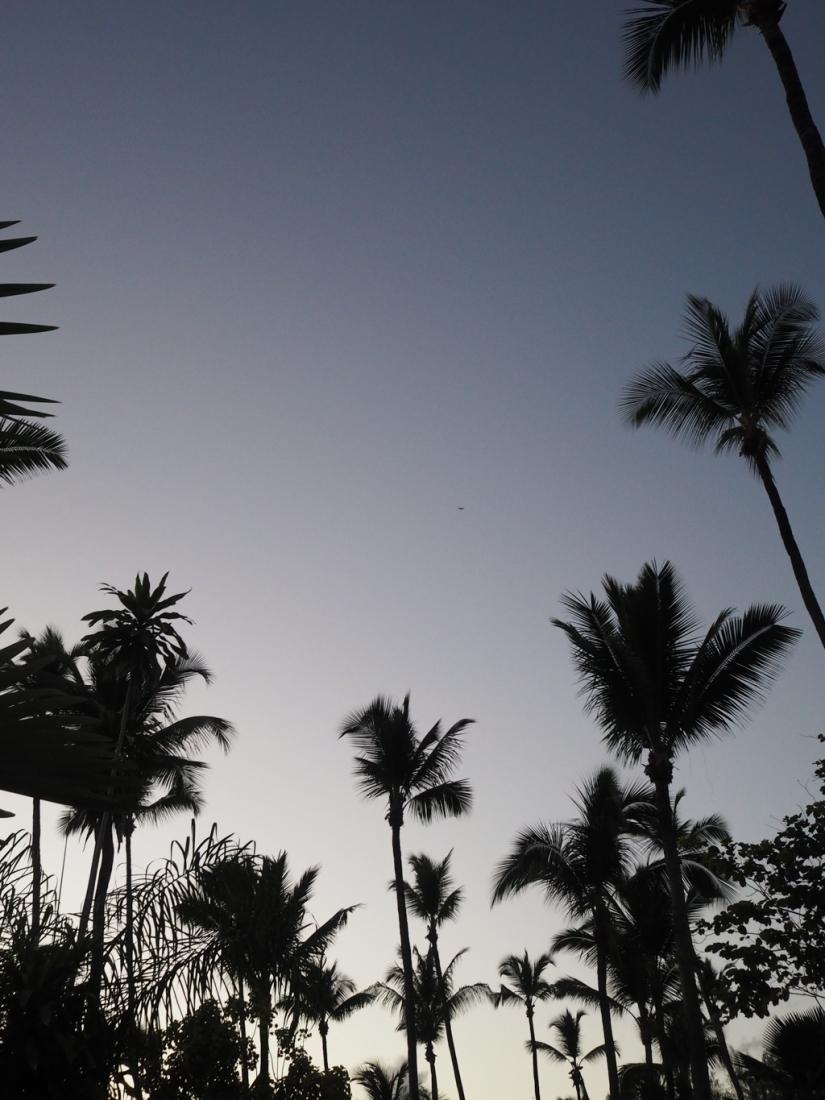 Voyage de noces Seychelles bonnes adresses hotel Avani Mahe avis l La Fiancee du Panda blog mariage-2214195