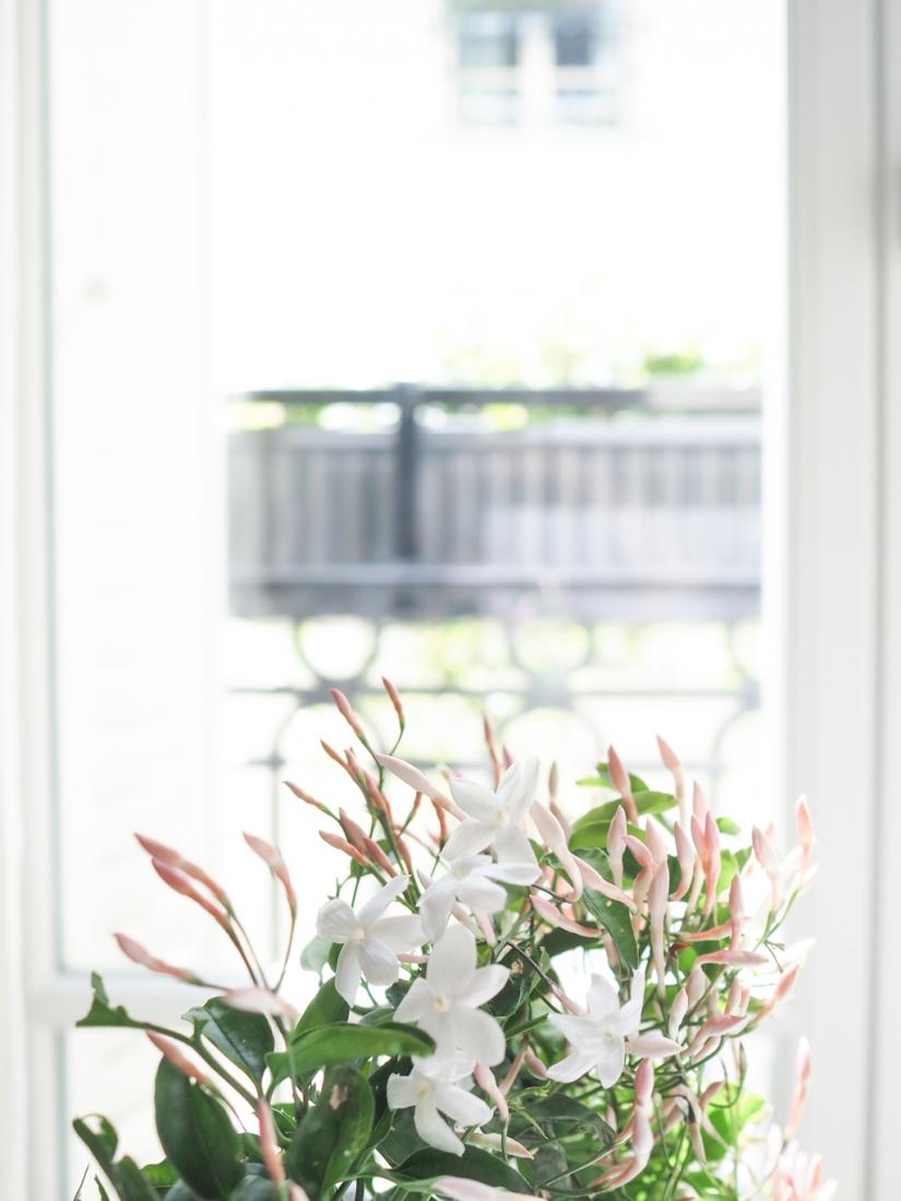 Sabe Masson parfum solide made in france matieres naturelles l La Fiancee du Panda © blog mariage et lifestyle-4249755