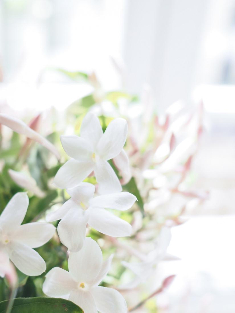 Sabe Masson parfum solide made in france matieres naturelles l La Fiancee du Panda © blog mariage et lifestyle-4249759