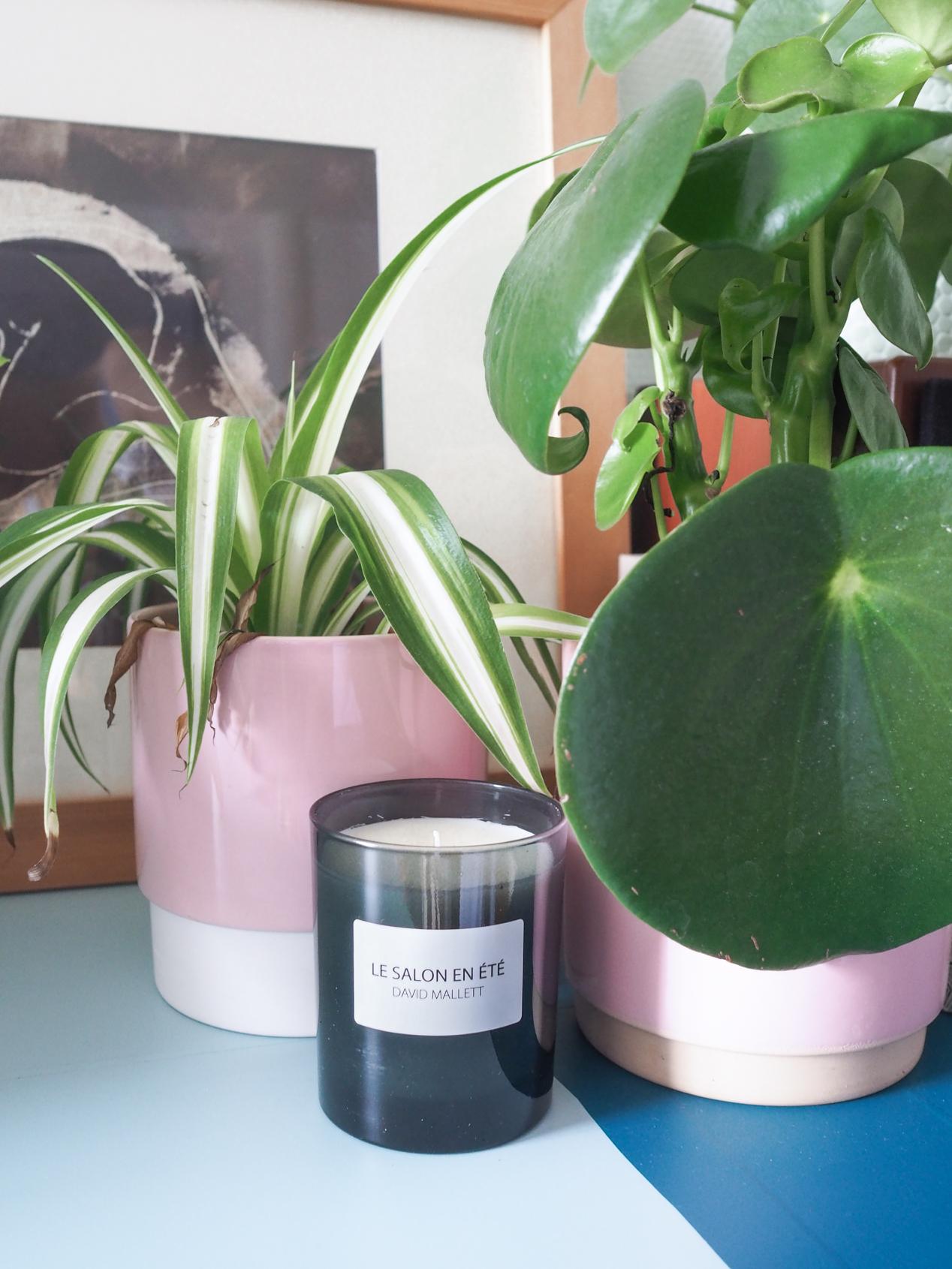 Plantes interieur depolluantes detoxifiantes guide Truffaut domus l La Fiancee du Panda blog deco et lifestyle-7203451