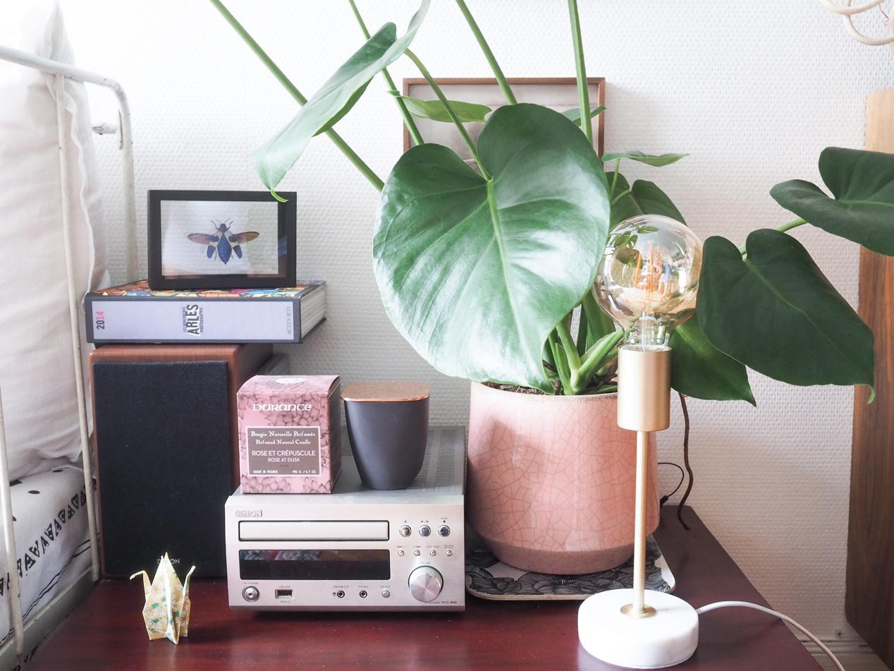 Plantes interieur depolluantes detoxifiantes guide Truffaut domus l La Fiancee du Panda blog deco et lifestyle-7203467