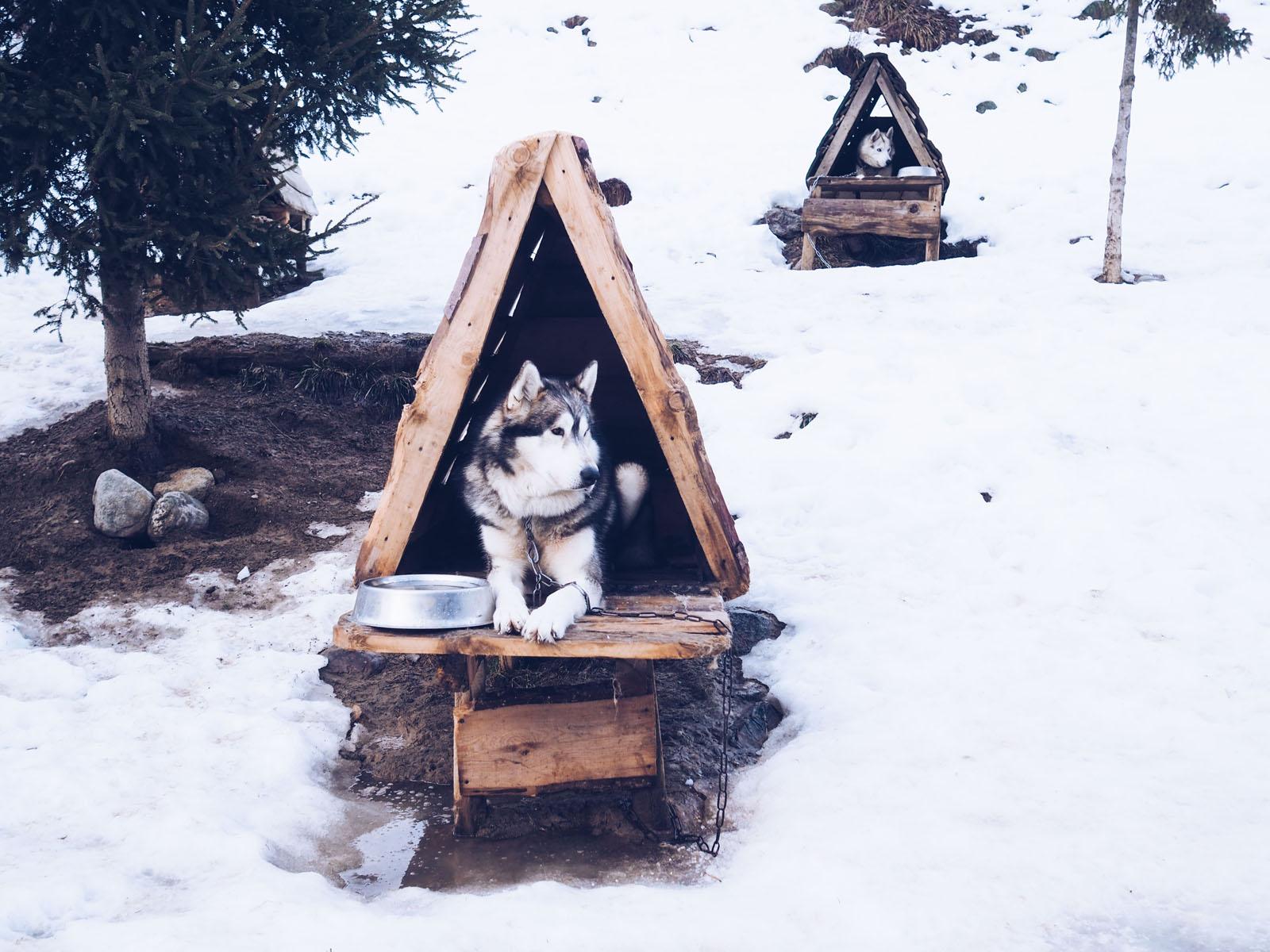 Vacances au ski en famille Hautes Pyrenees bonnes adresses hotel station l La Fiancee du Panda blog mariage et lifestyle-1048460