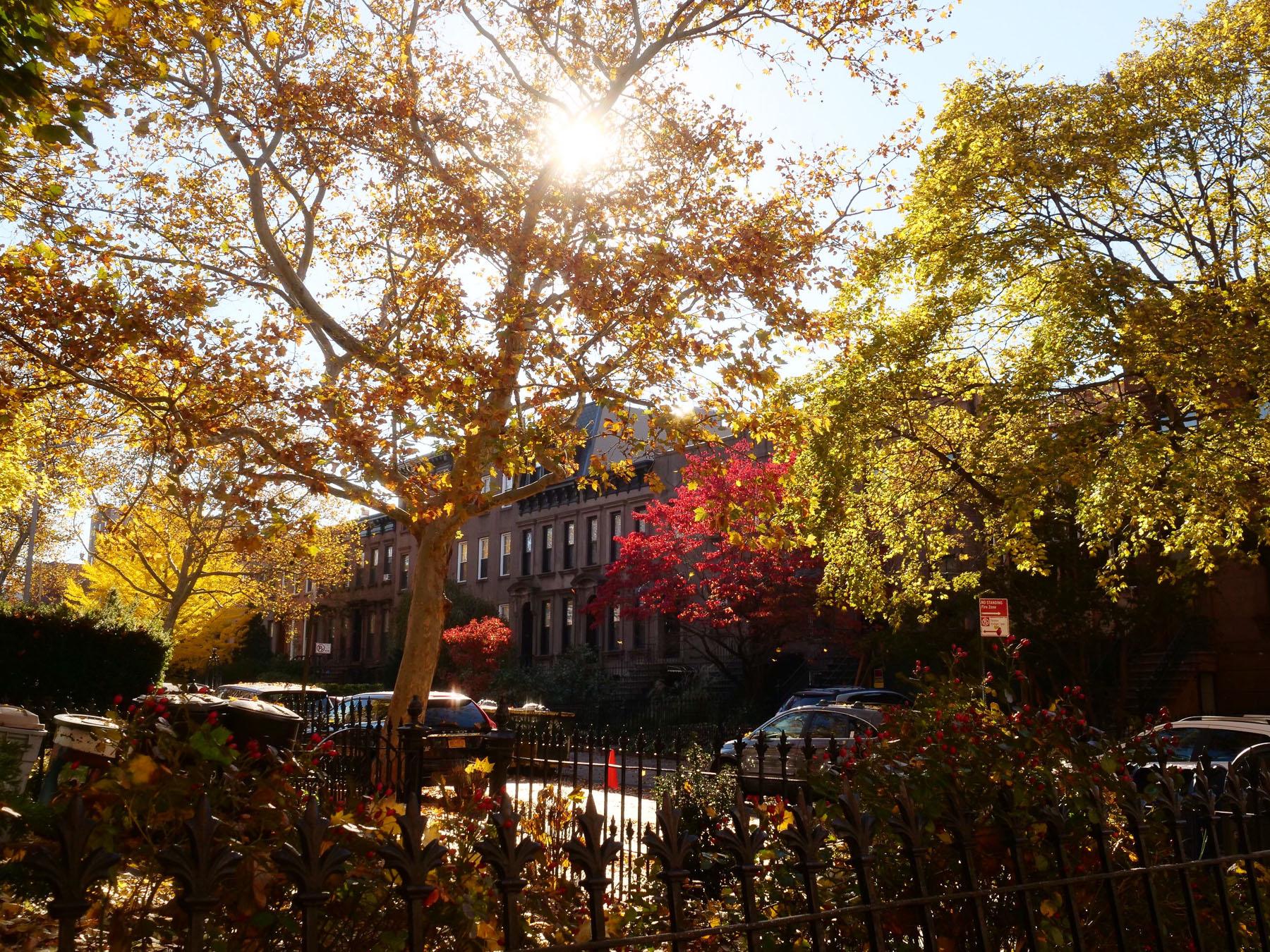 Notre nouvelle vie en famille a New York Brooklyn Carroll Gardens l La Fiancee du Panda blog famille et lifestyle--11
