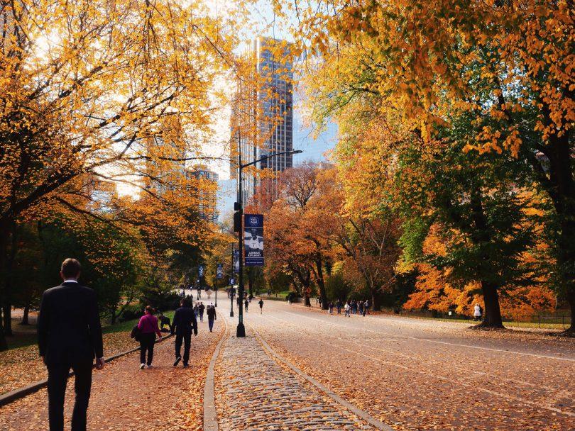 Notre nouvelle vie en famille a New York Brooklyn Carroll Gardens l La Fiancee du Panda blog famille et lifestyle-149